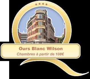 qa ours blanc wilson
