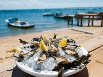 Partez à la découverte de la Gastronomie du Bassin d'Arcachon