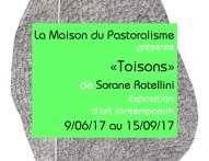 """""""Toisons"""" de Sorane Rotellini"""